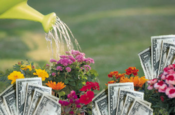 Save Money This Spring by…